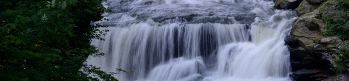 Cuyahoga Falls Chapter NSDAR